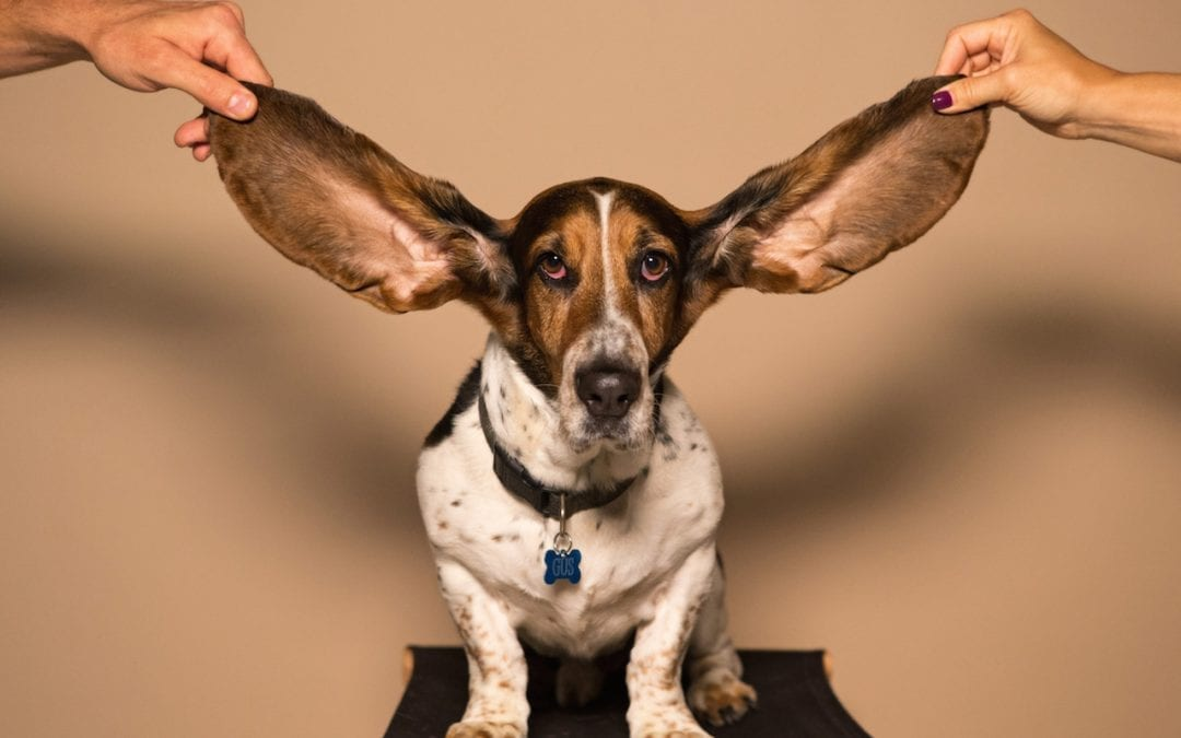 I'm listening…