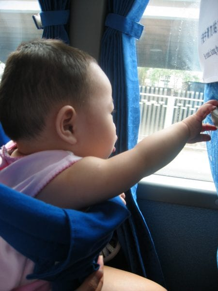 Maddi-Fu looking out into the world from the bus window